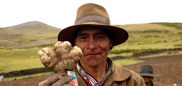 Ancient People Living in the Andes had Bodies Adapted to Harsh Environmental Conditions